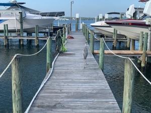 2384 Placid Drive, Fort Walton Beach, FL 32547