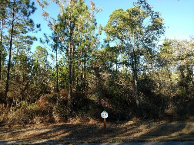 Lot 3 Sun Bear Circle, Freeport, FL 32439