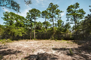 Lot 18A Amelia Lane, Santa Rosa Beach, FL 32459