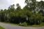 Lot 19 Cypress Pond view from SW Corner