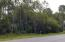 West Side of Lot 19 Cypress Pond Rd