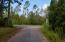 Cypress Pond Rd Intersection with Co Rd 393