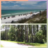 Lot 12 Blue Gulf Drive, Santa Rosa Beach, FL 32459