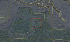 40 ACRES Bunker Creek Area, Vernon, FL 32462