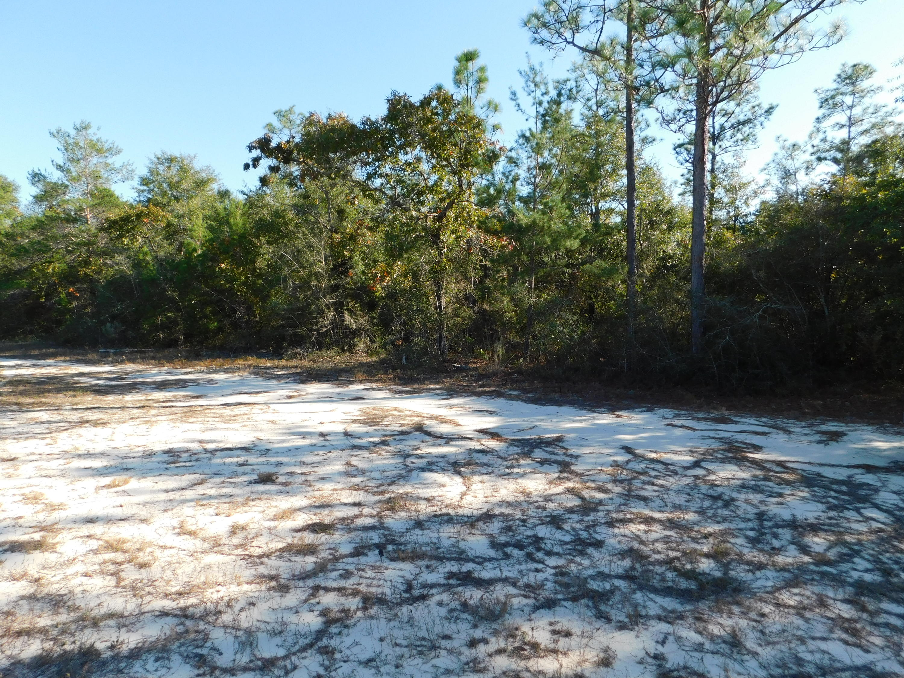 12 Acres Hwy 90, Crestview, FL, 32539