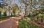 Winding driveway - privacy enhanced by tall trees - lush landscaping on a .78 acre estate