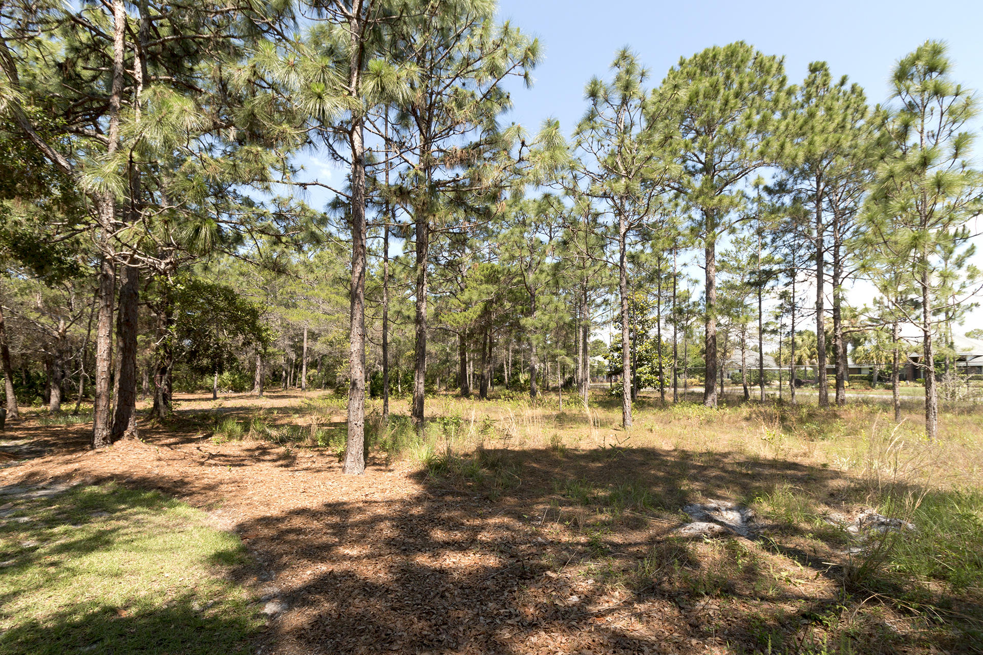 Pine Valley Drive 2938 (3)