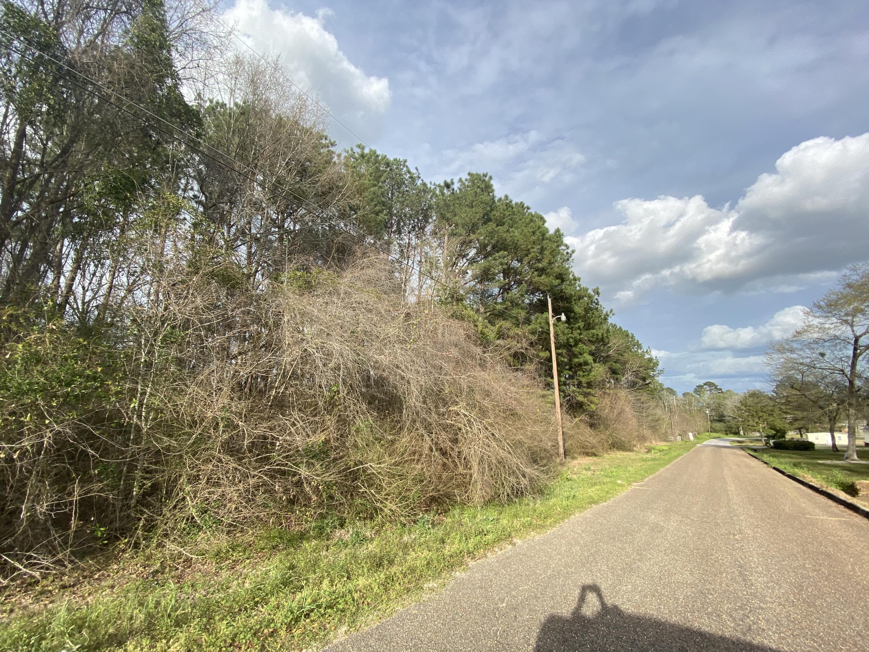B2 Duval Drive, Opp, AL 36467