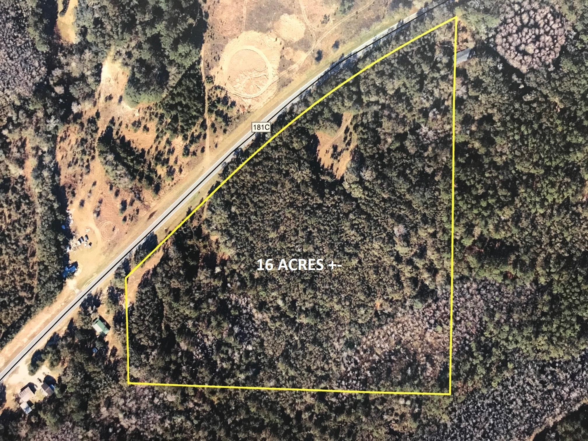 16AC E Co Highway 181C, Defuniak Springs, FL 32435