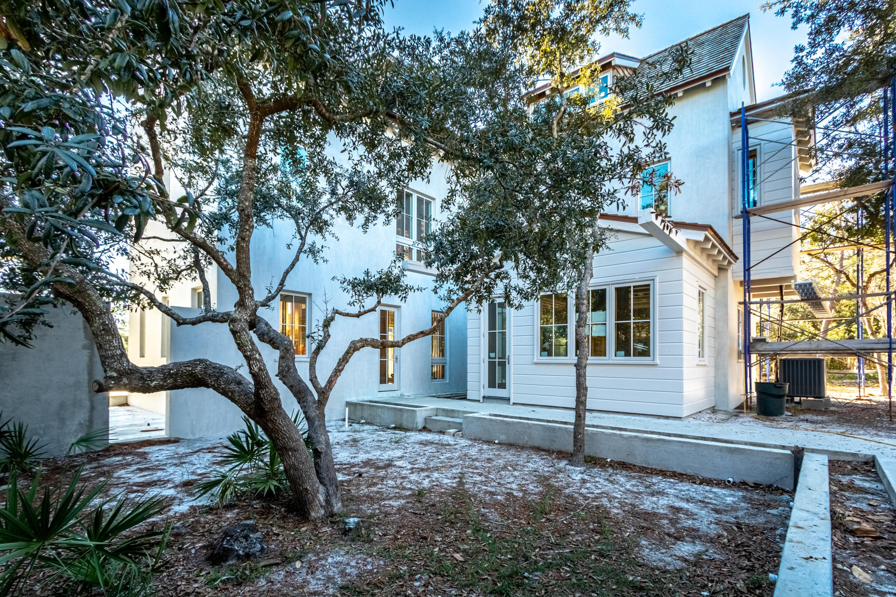 Courtyard with Beautiful Live Oak