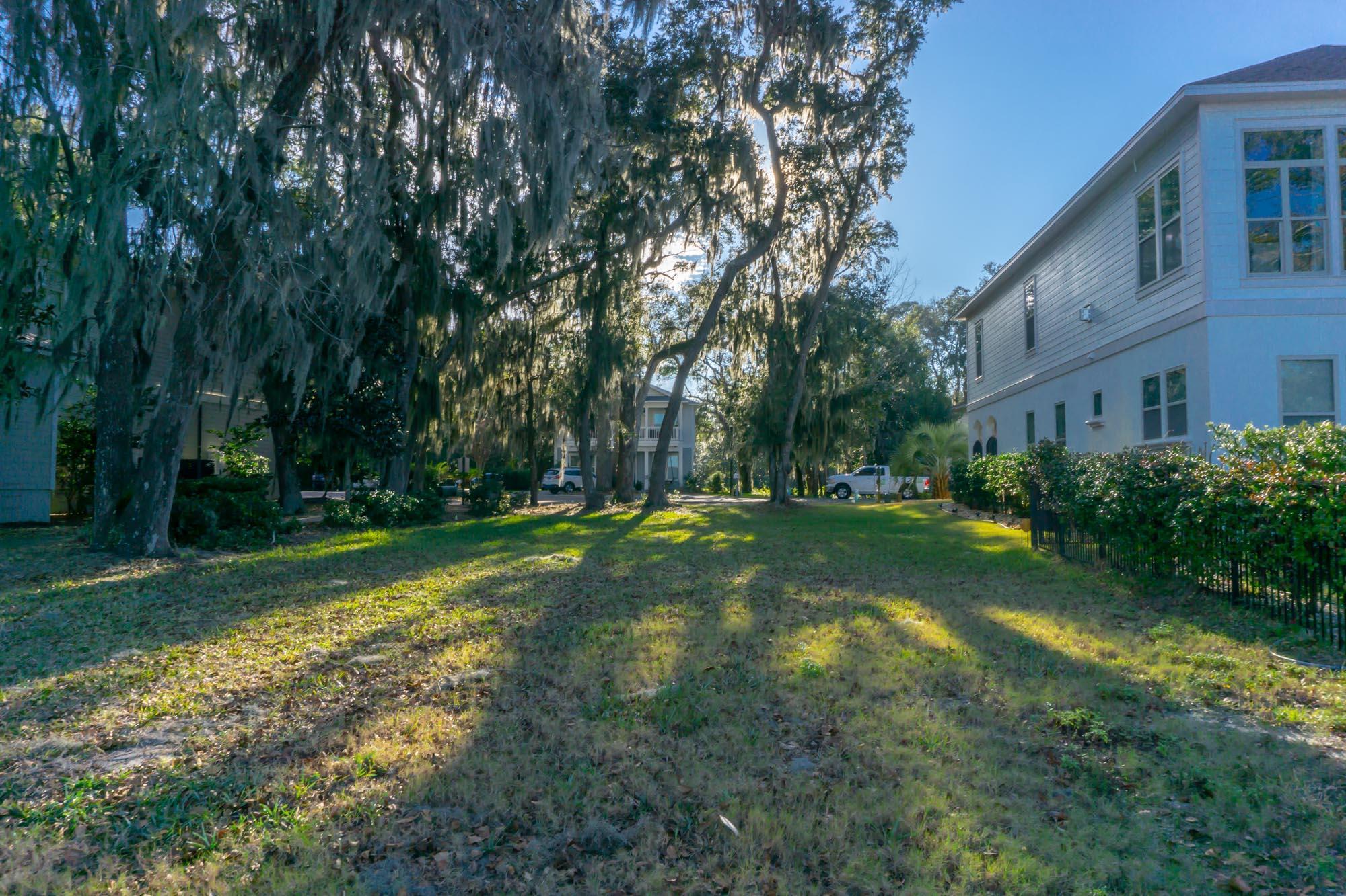 Lot 20 Ground Photos Sacred Oaks Mainsai