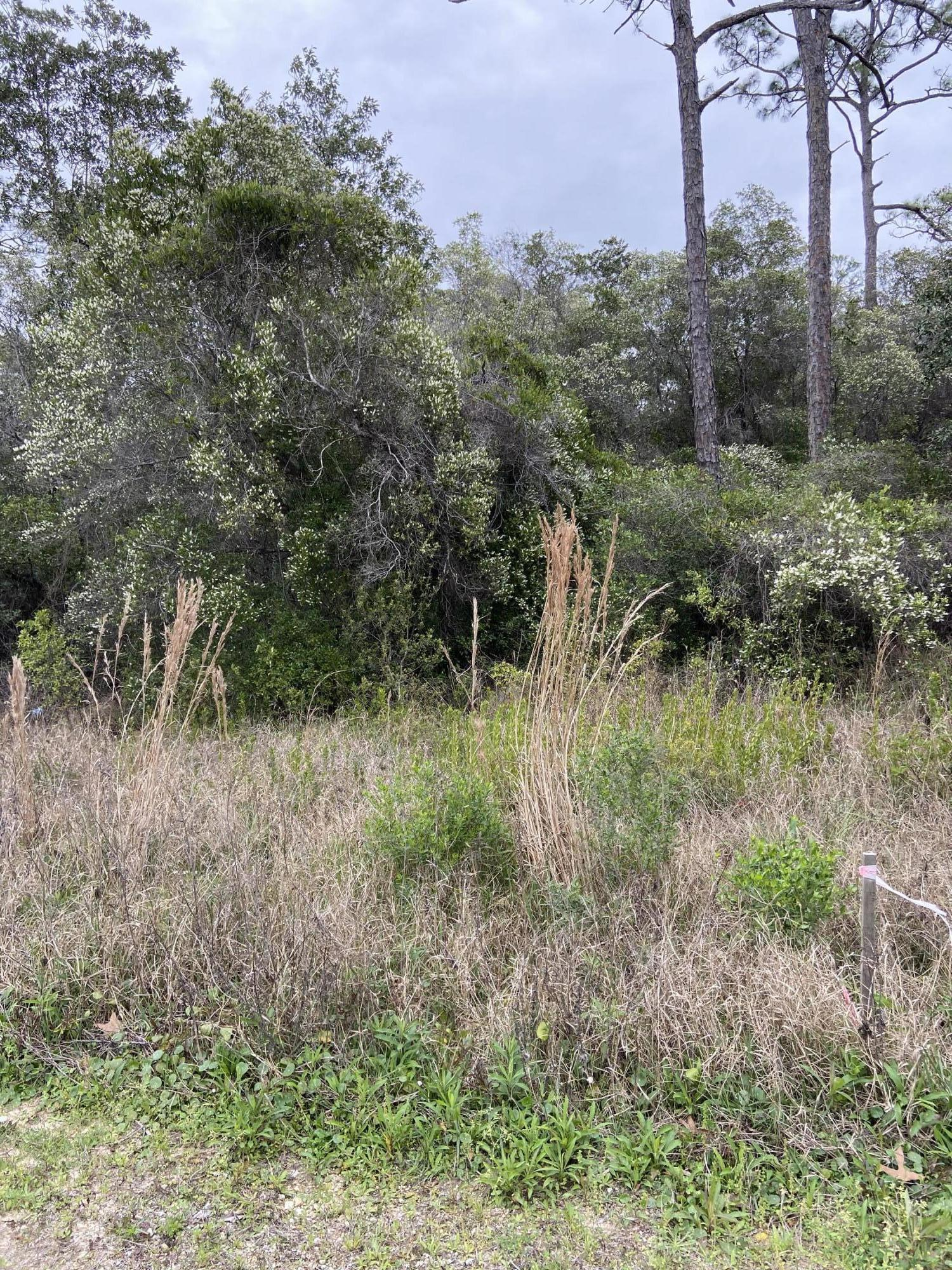 Located across from popular businesses, down the street from a new development and in the busy Grayton Beach area, this is one of the few lots available with frontage on Hwy 283.  Property is zoned VMU (Village Mixed Use) and backs to the Conservation area. Take a stroll along the running path and come see this lovely lot! **Buyer to verify all information.