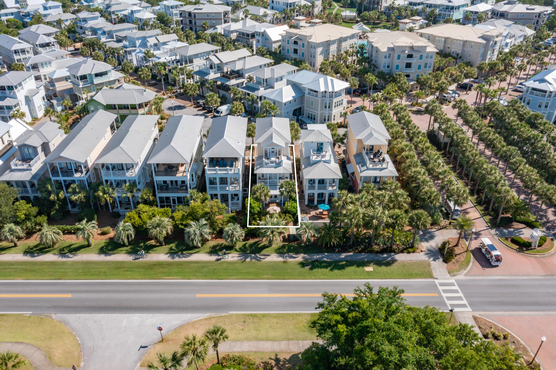 HOME 74 Blue Dolphin-1