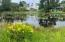 Flowering plants on the lake