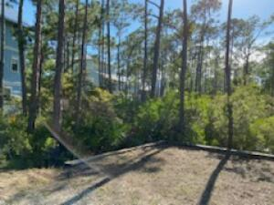 44 Sweetgum Loop, Inlet Beach, FL 32461