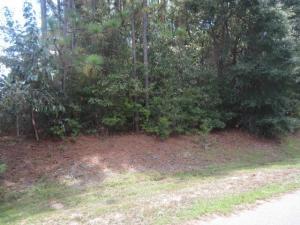 X Cherokee Nene, Crestview, FL 32536