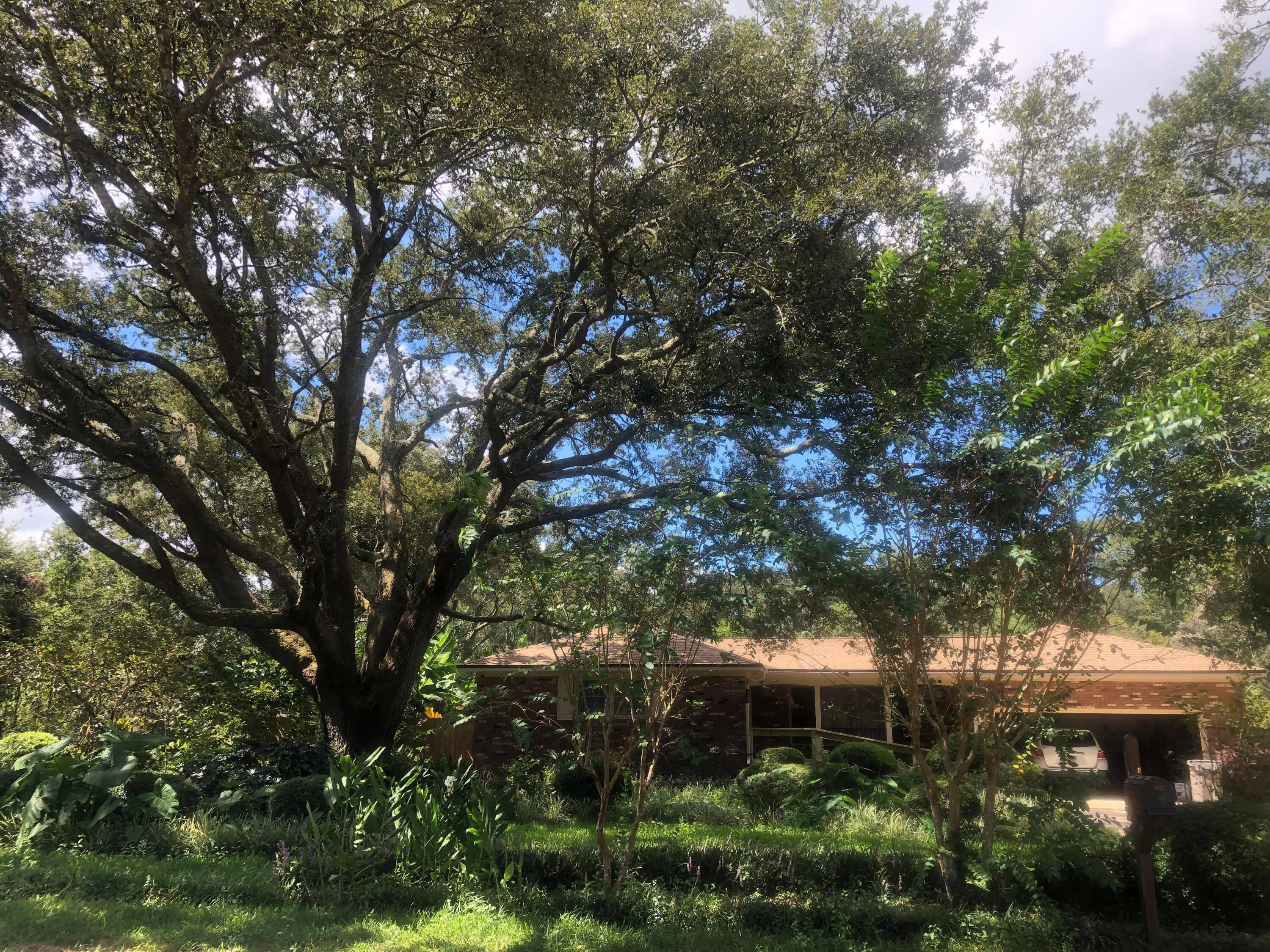 Located within Myrtle Grove within walking distance to Osceola Municipal Golf Course, this charming
