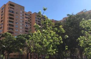 Piso En Alquileren Valencia, Algiros, España, ES RAH: 20-213