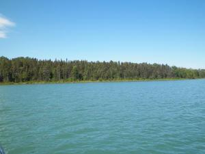 39 Acres E South Caribou Lake RD