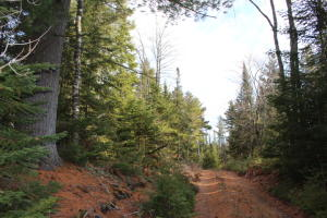 575 Acres South Caribou Lake RD