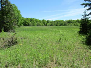 10 acres CO RD 417
