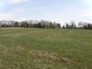 18397 Meadow LN