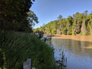 0 N Pine River RD