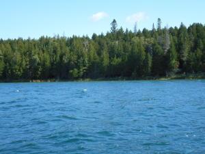 Lot #2 Marquette Island