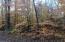 0 W Birch Shores DR, Trout Lake, MI 49793