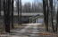 2.5 Acres of Hardwoods