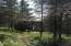 29993 Mead Fire LN, Newberry, MI 49868