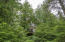 Nicely treed lot for privacy.