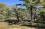 Wooded parcel will provide excellent privacy