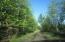 Driveway into cabin