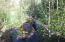 Hiawatha creek
