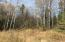 acreage located on a plowed, paved road with woods, good hunting and surrounded by state lands. More land to explore and enjoy.