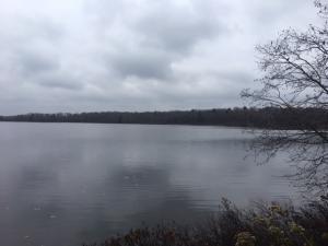 00 Birch Shores DR, Trout Lake, MI 49793