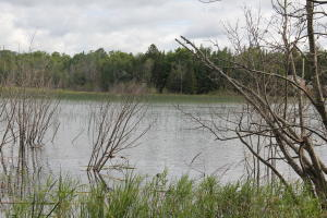 000 S Forest LN, Cedarville, MI 49719