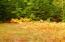 17660 ulbeck TRL, Newberry, MI 49868