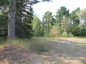 150x300 Commercial Lot
