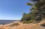 Extraordinary caramel-colored sandy beach