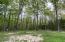 Cleared area near camp cabin