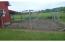 Former Chicken coop now a fenced garden
