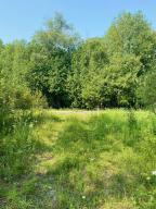 Wooded 38+/- acre parcel with clearing and gravel driveway.