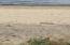 Sandy beachfront strewn with smooth beach stones