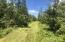 0 E 16 mile RD, Barbeau, MI 49710