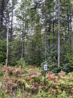 8.99 Acres with Year Round Access