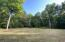 Massive cleared area near the cabin for family gatherings, campers, etc.