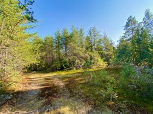 160 acres of prime hunting land in the EUP.