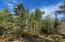 Over 2 Acres of Land
